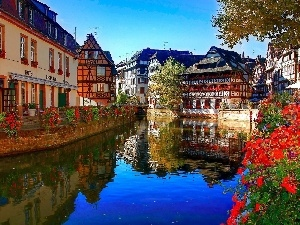 River, Flowers, Hotel hall, Restaurant, Town