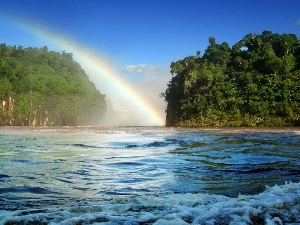 Great Rainbows, viewes, River, trees