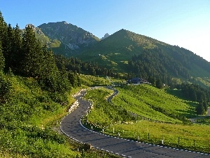 road, forest, Mountains
