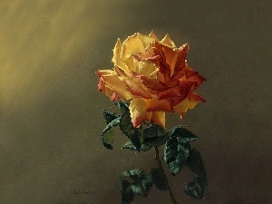 rose, picture, painting