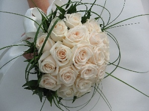 wedding, white, rouge, bunch