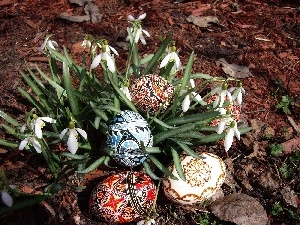 snowdrops, easter, eggs
