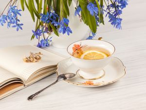 squill, tea, background, teaspoon, White, Blue, Flowers, note-book