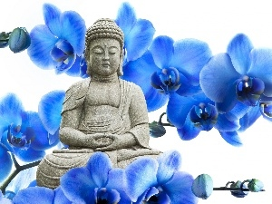 blue, orchids, Statue of Buddha, Flowers