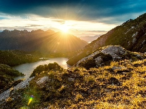 sun, Plants, River, rays, Mountains