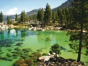 Mountains, lake, Tahoe, California, forest, Stones