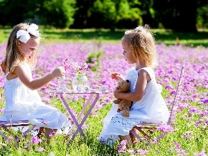 Meadow, table, tea, girls