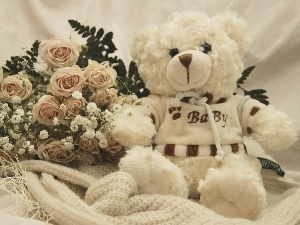 bouquet, White, teddy bear, rouge