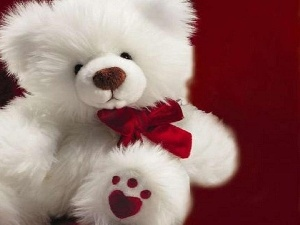 bow, White, teddy bear
