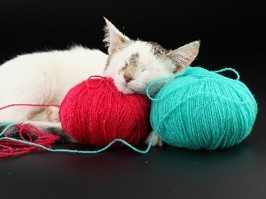 sleepy, color, Threads, cat