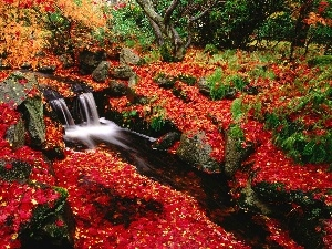 Stones, autumn, trees, viewes, Leaf, waterfall