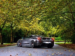 autumn, Ferrari, trees, viewes, Way, F430