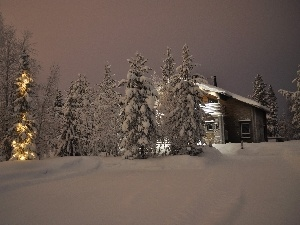 trees, viewes, Home, Snowy, winter