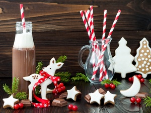 ginger, Christmas, Stars, fawn, Twigs, chocolate, Bottle, glace, composition, straws, Christmas