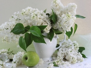 White, apples, Vase, Lilacs
