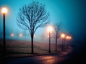 trees, Automobile, Fog, lanterns, Way, viewes, autumn
