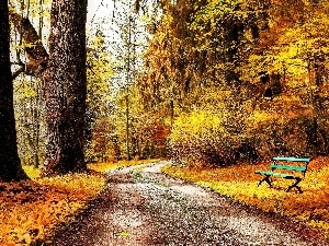 Bench, Park, viewes, autumn, trees, alley