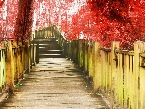 bridge, trees, viewes, Red