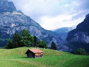 viewes, cote, Meadow, trees, Mountains