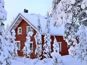 viewes, house, Snowy, trees, winter