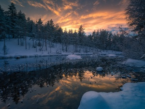 Ringerike Municipality, Norway, winter, snow, trees, viewes, lake, forest, Great Sunsets