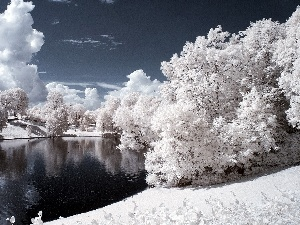 viewes, Snowy, Park, clouds, Pond - car, trees