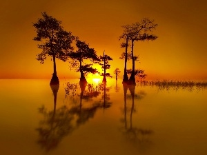 lake, west, viewes, reflection, trees, sun