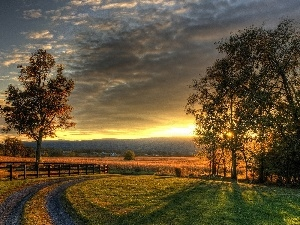viewes, Great Sunsets, fence, trees, Way