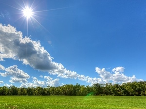 clouds, rays of the Sun, trees, viewes, Meadow