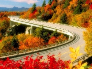 viewes, Way, color, trees, Mountains