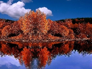 trees, autumn, water, reflection, viewes, Red