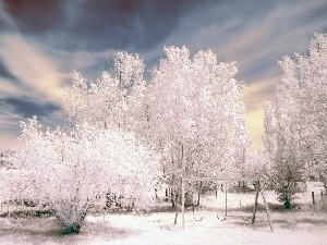 Winter, Aura, trees, viewes, snow