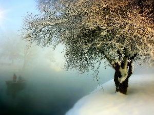 lakes, trees, winter, Fog