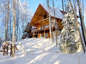 wooden, house, trees, viewes, Snowy