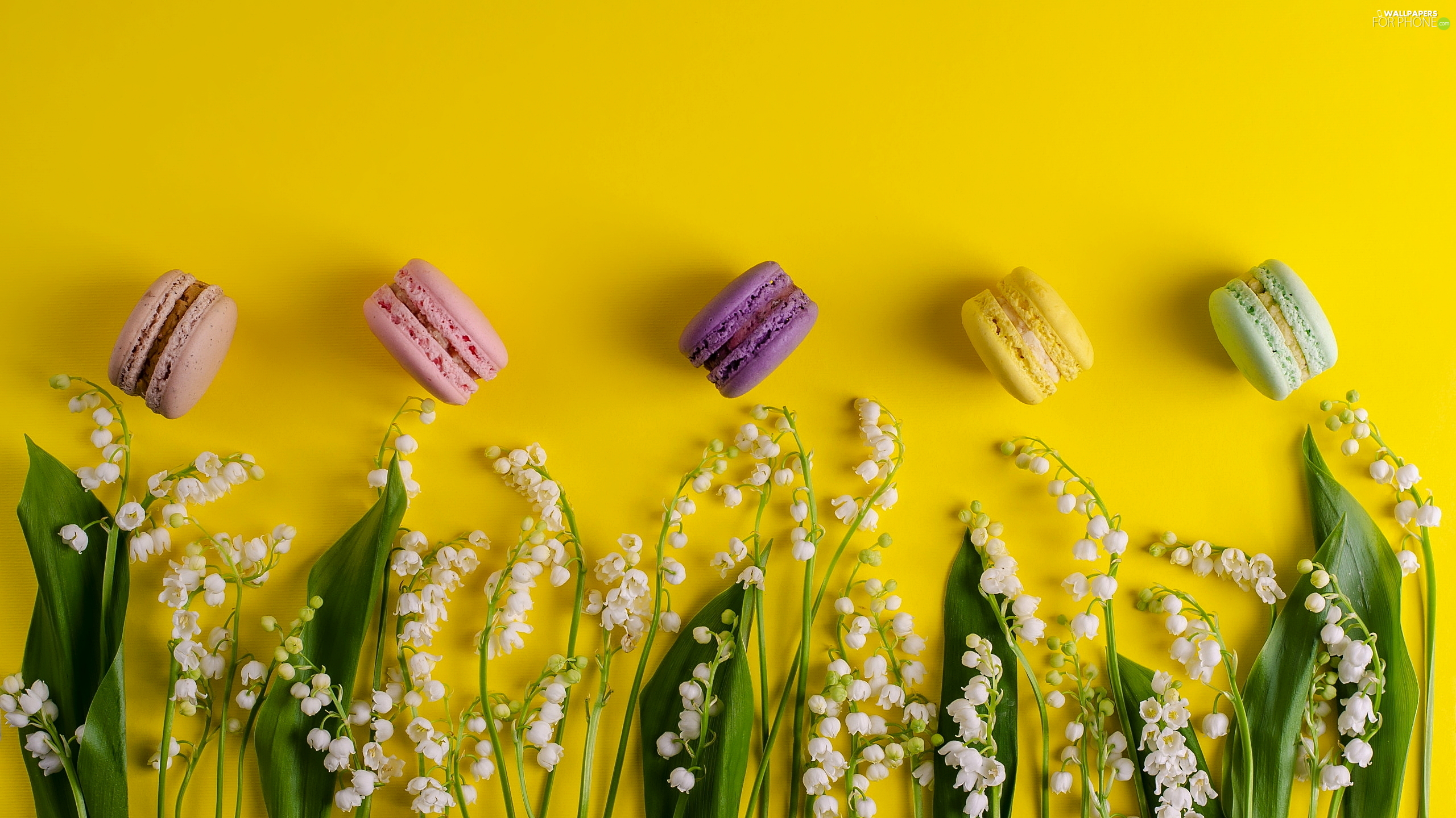 Yellow, background, Macaroons, lilies, Cookies