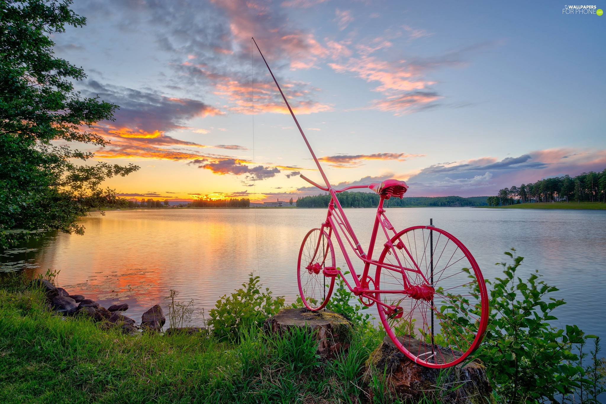 fishing rod, lake, Bike