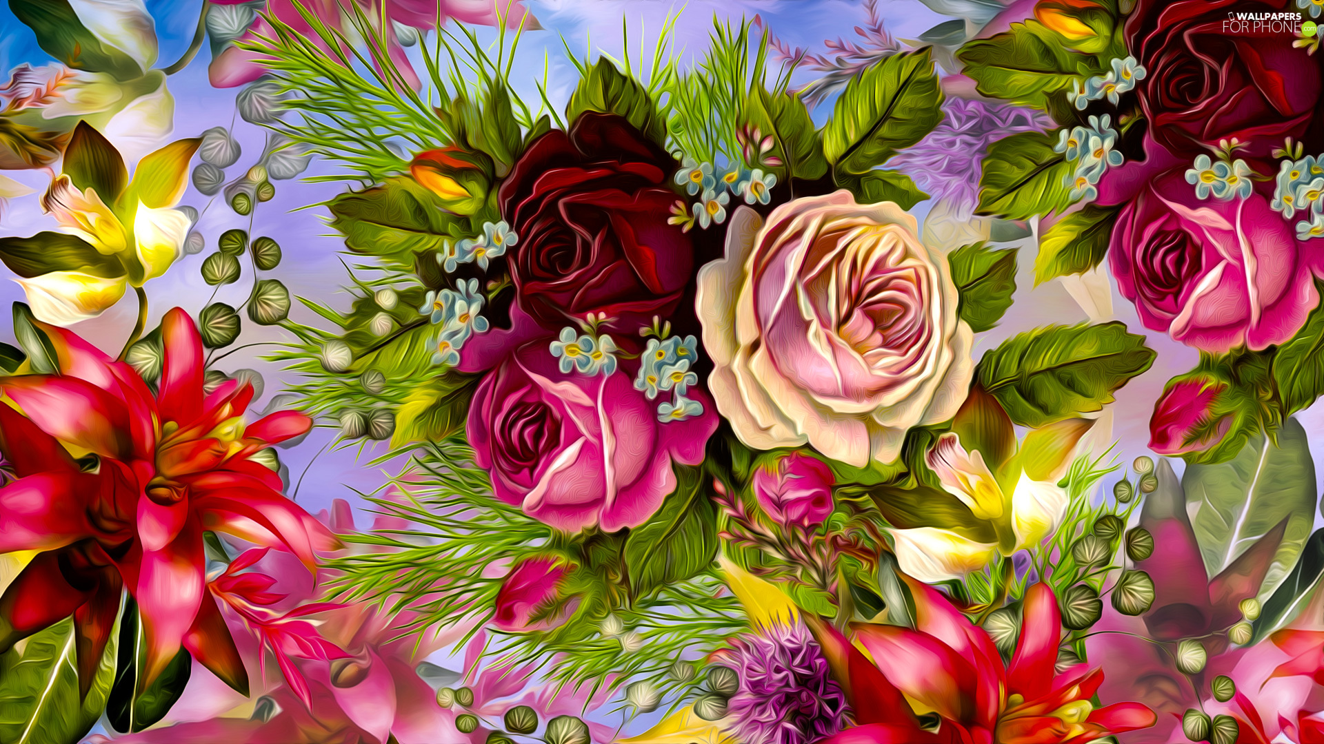 graphics, Different colored, roses, Flowers