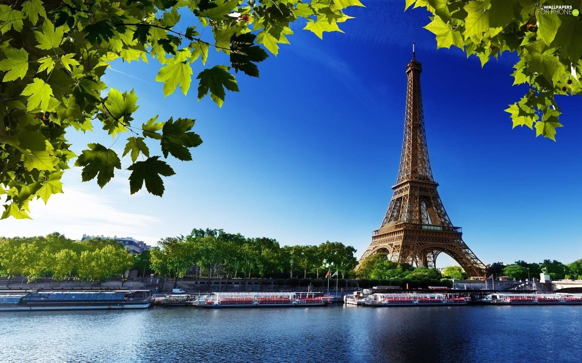 France, Eiffla Tower, Paris