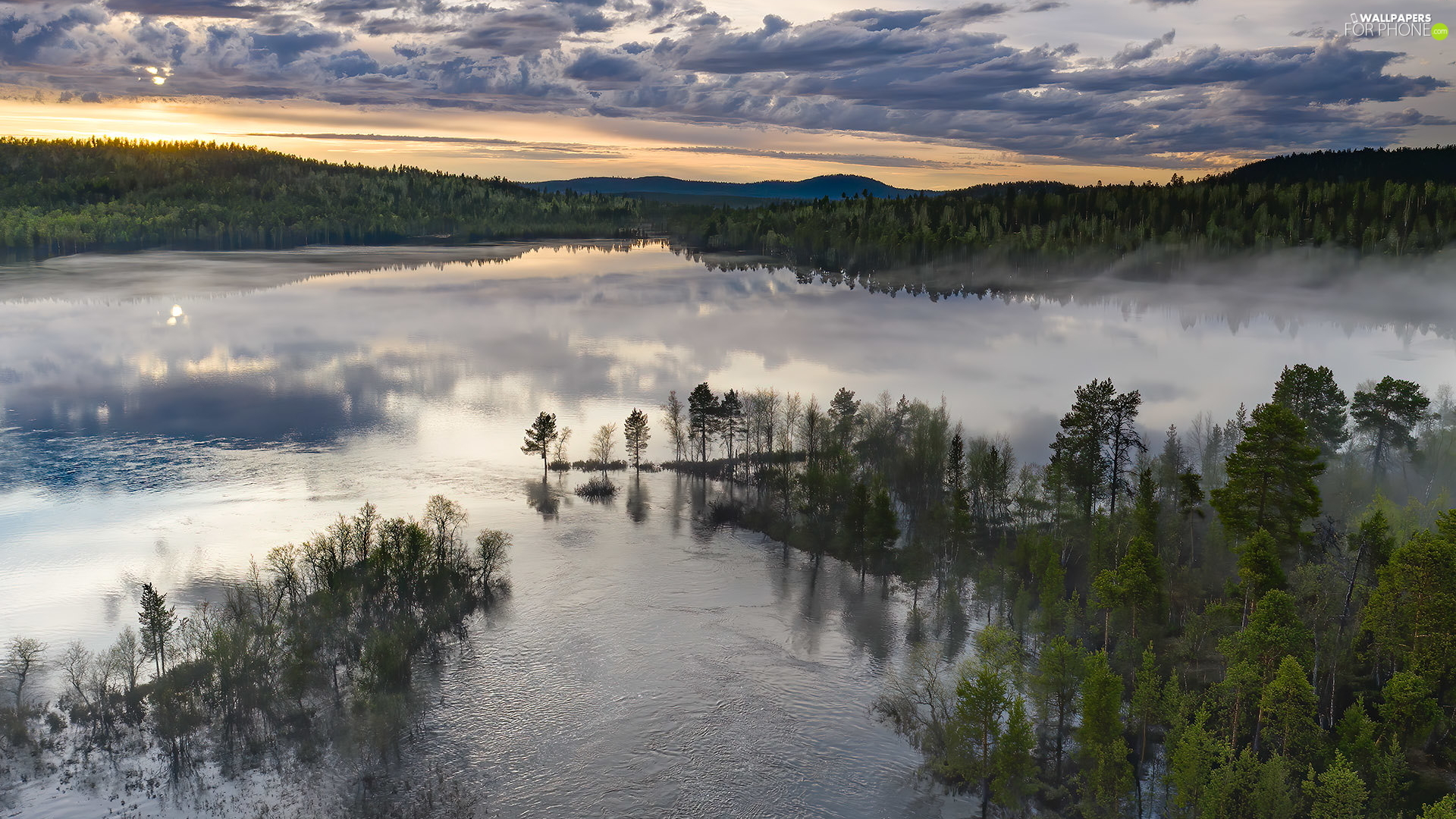 viewes, woods, Lapland, trees, Inari Lake, Fog, Finland