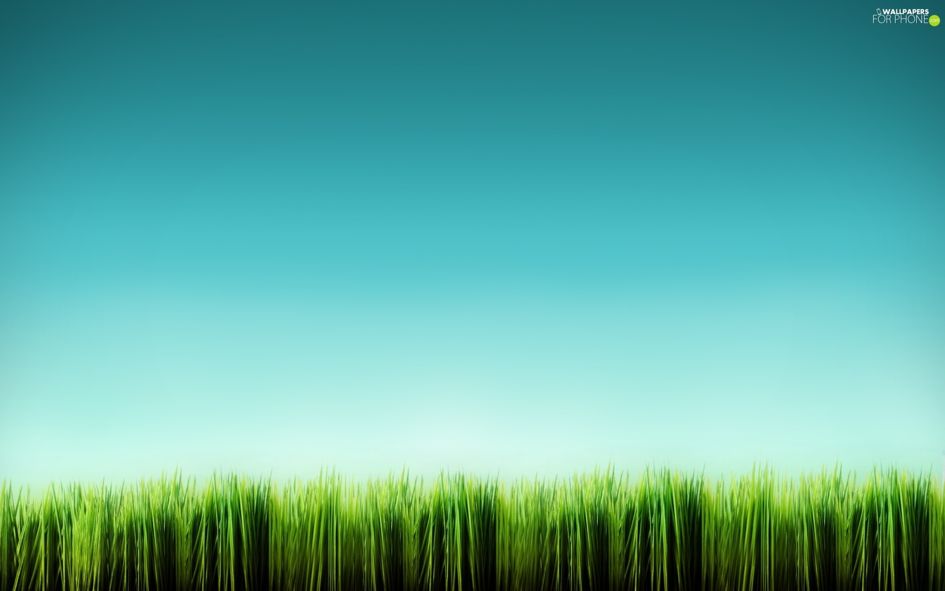 grass, Green, equal