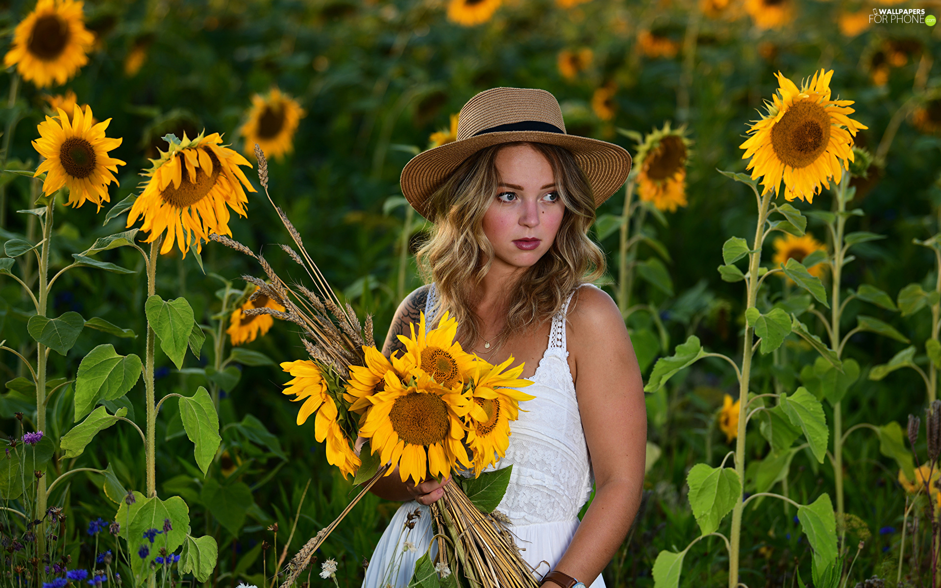Hat, White, Nice sunflowers, dress, bouquet, Blonde, Women, Flowers