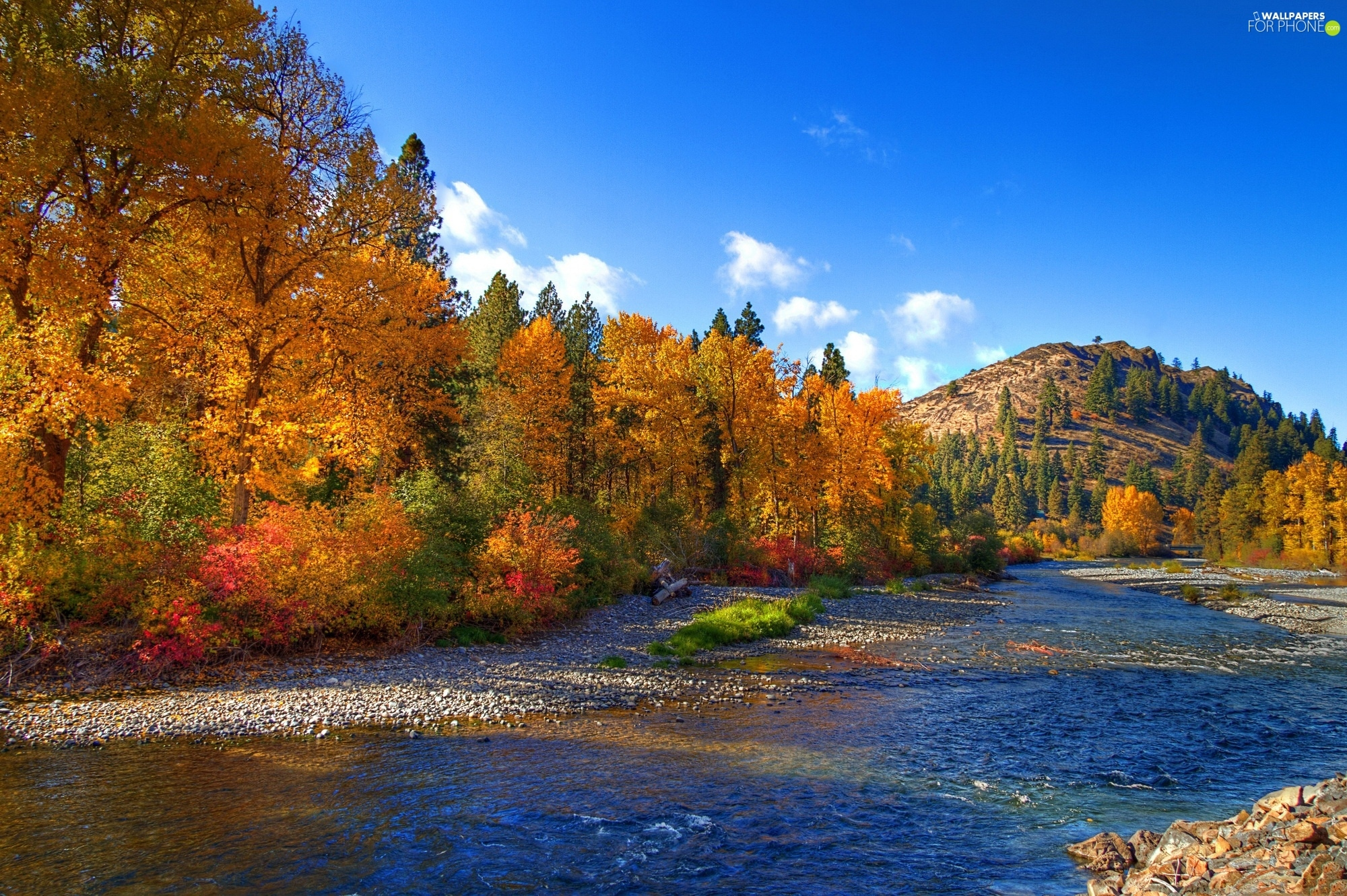 Hill, autumn, River