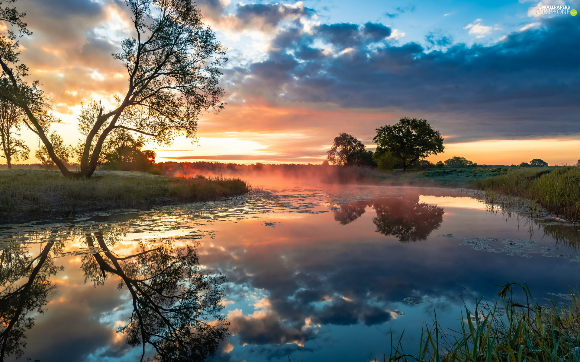 viewes, grass, reflection, Sunrise, clouds, trees, River, morning