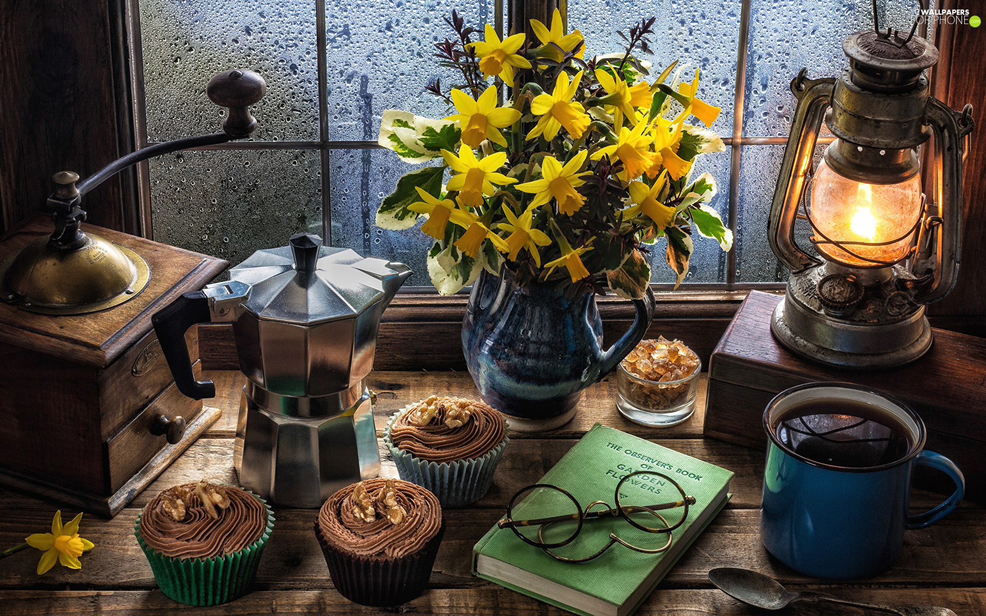Oil Lamp, Window, mill, Jonquil, composition, Coffee Percolator, Muffins