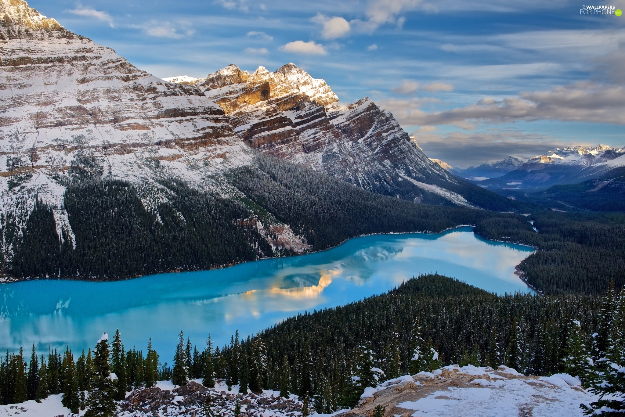 Mountains Canadian Rockies, Canada, woods, winter, Peyto Lake, Banff National Park
