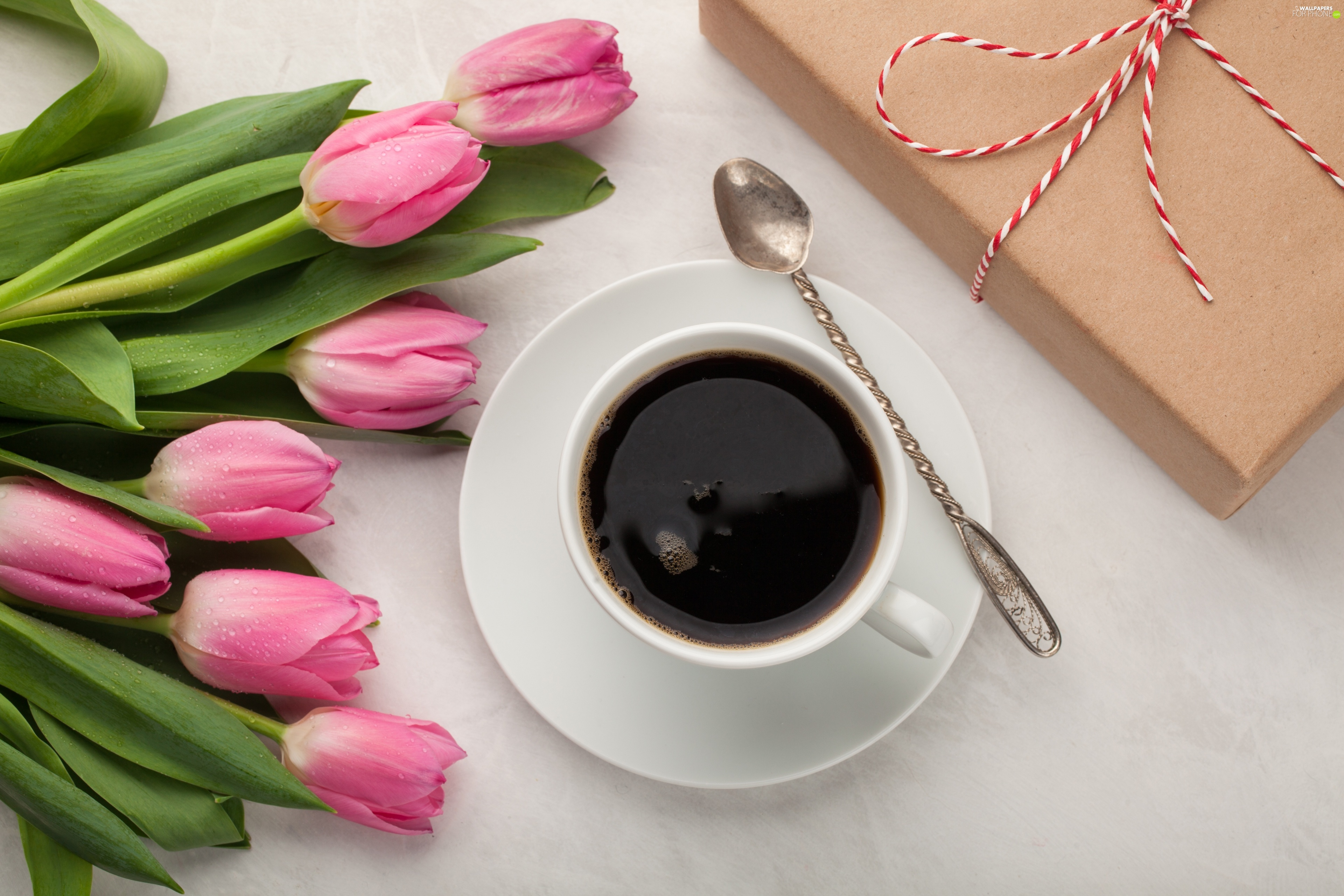 coffee, Tulips, Present, Pink