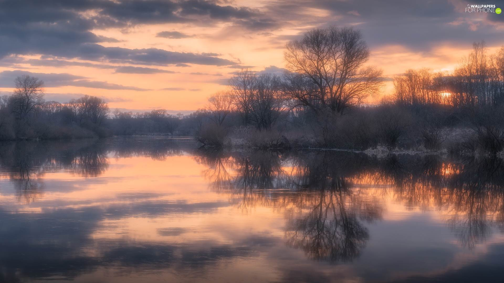 viewes, reflection, River, trees, Sunrise