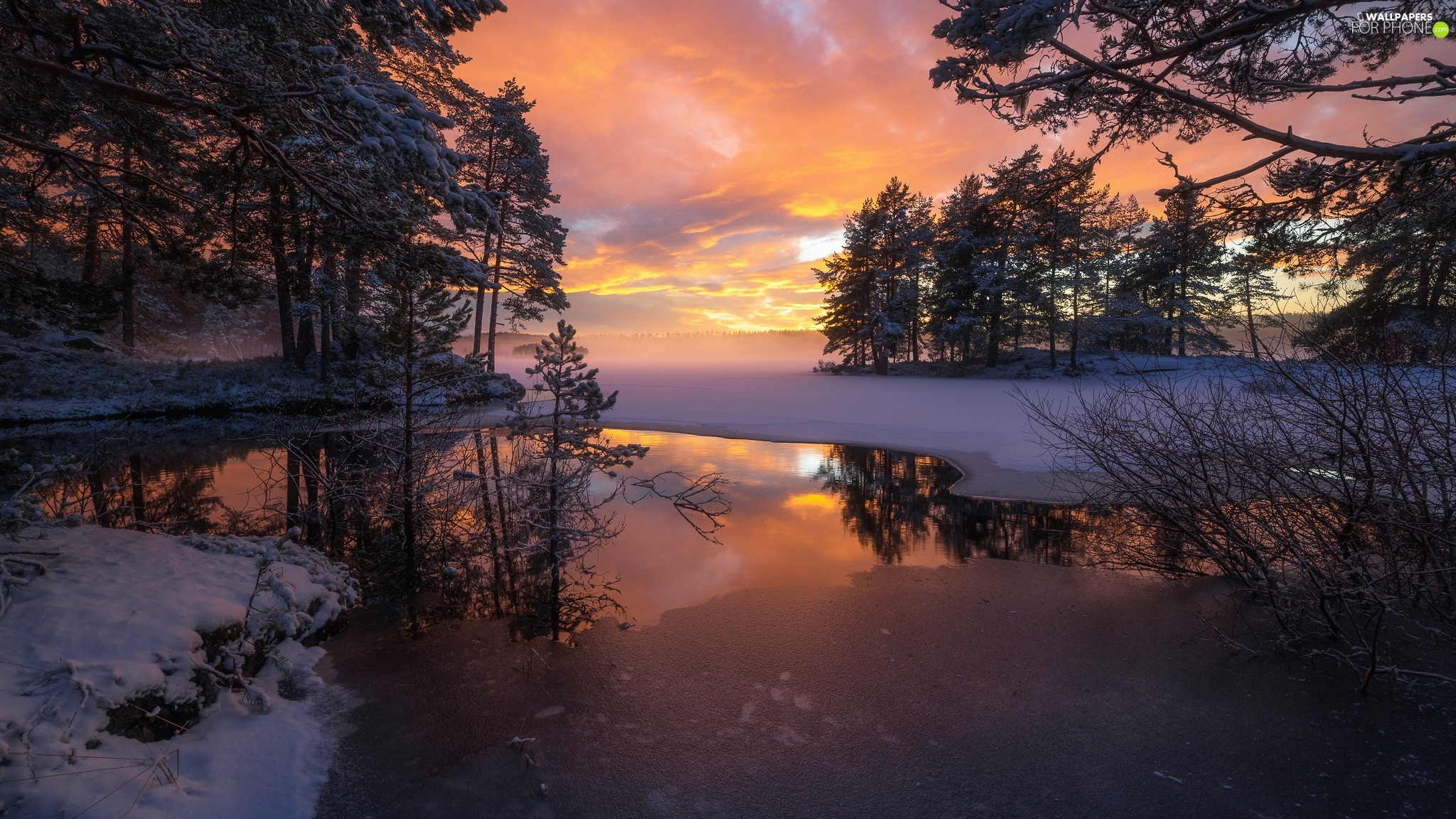 snow, winter, Icecream, lake, Ringerike, Norway, viewes, Great Sunsets, trees