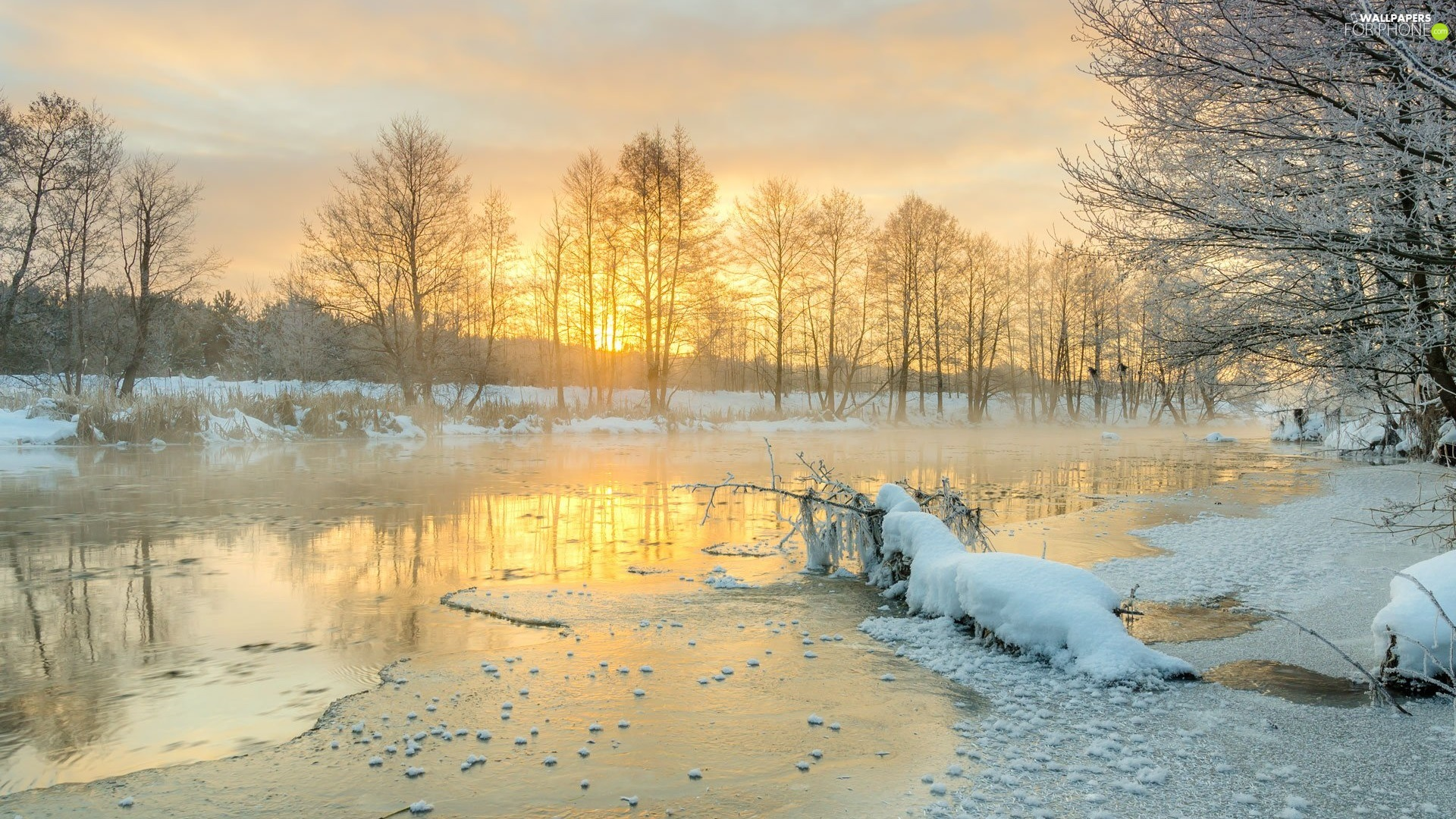 lake, winter, viewes, Sunrise, trees, Snowy