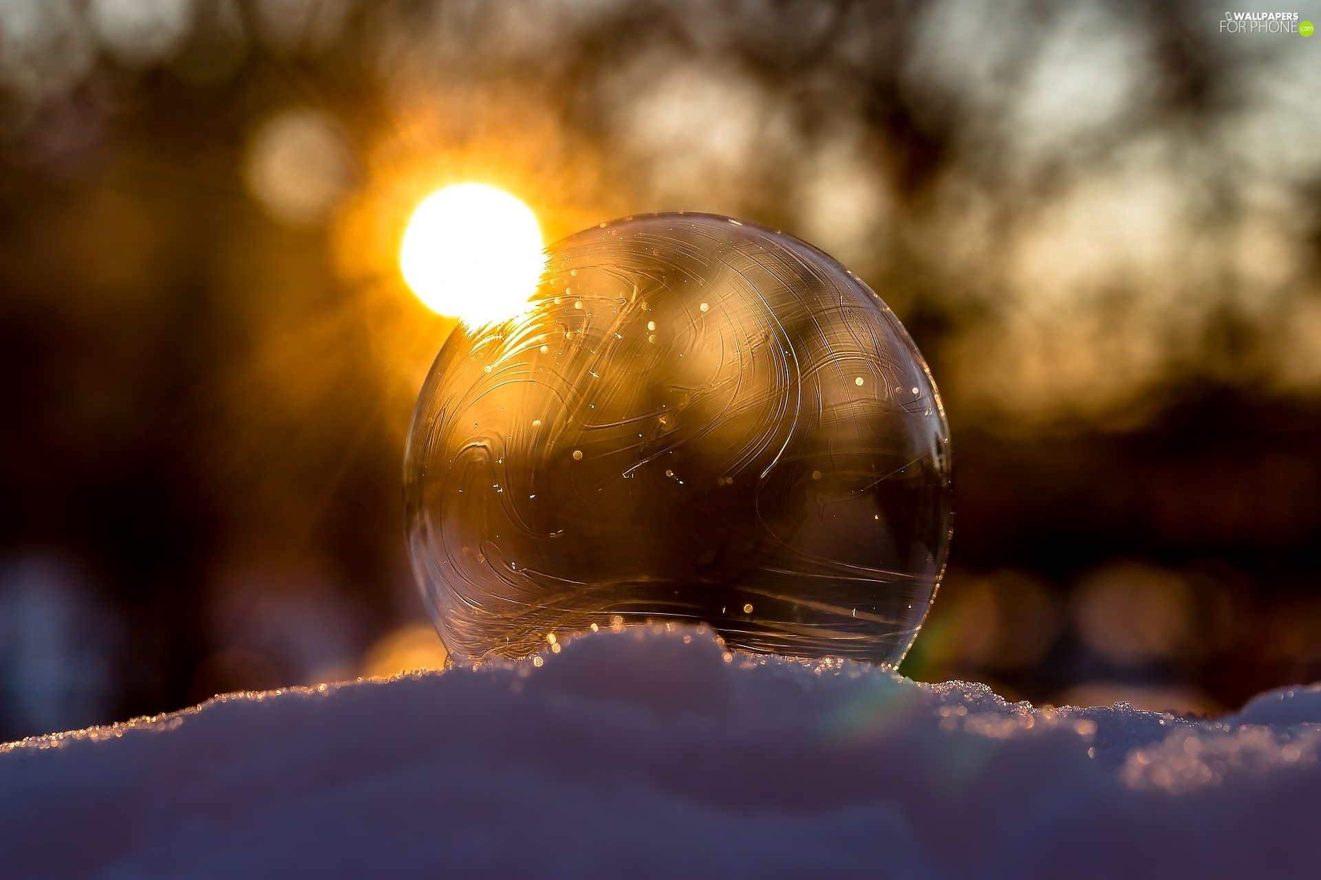 Frost, winter, Great Sunsets, Close, bubble, snow